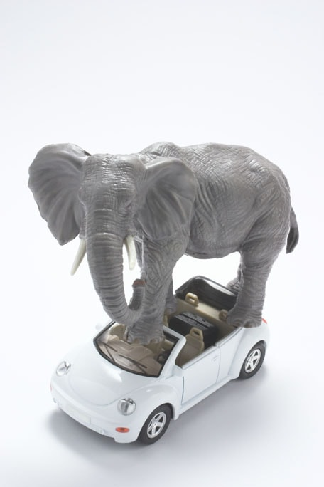 20730-elephant-autonomous-car-min.jpg