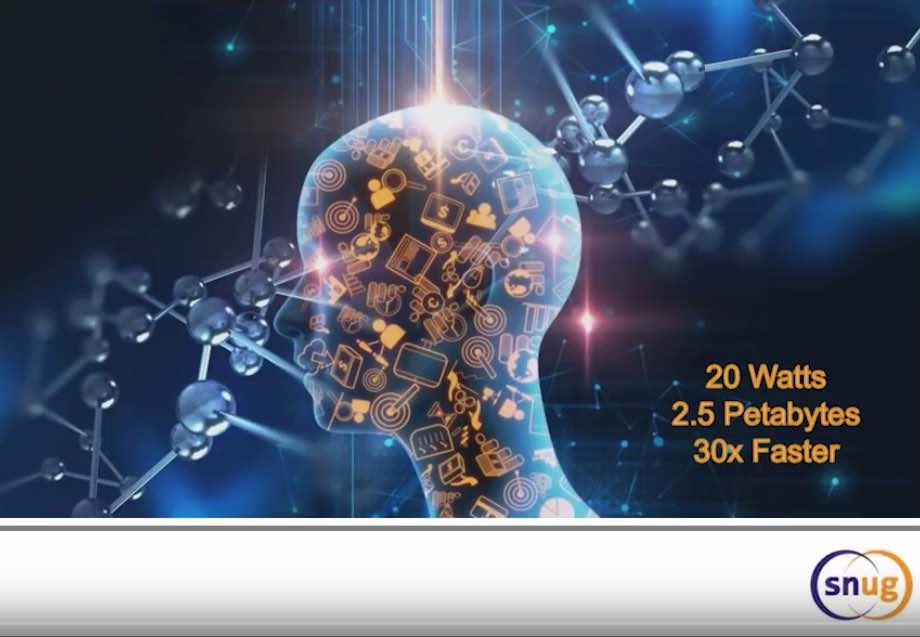 21646-human-brain.jpg