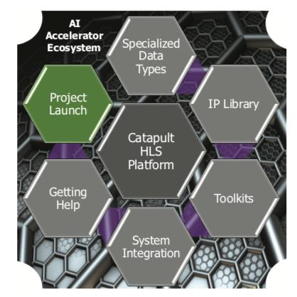 AI accelerator ecosystem
