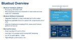 CEVA Bluebud TWS Platform