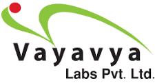 Vayavya Labs SemiWiki 2