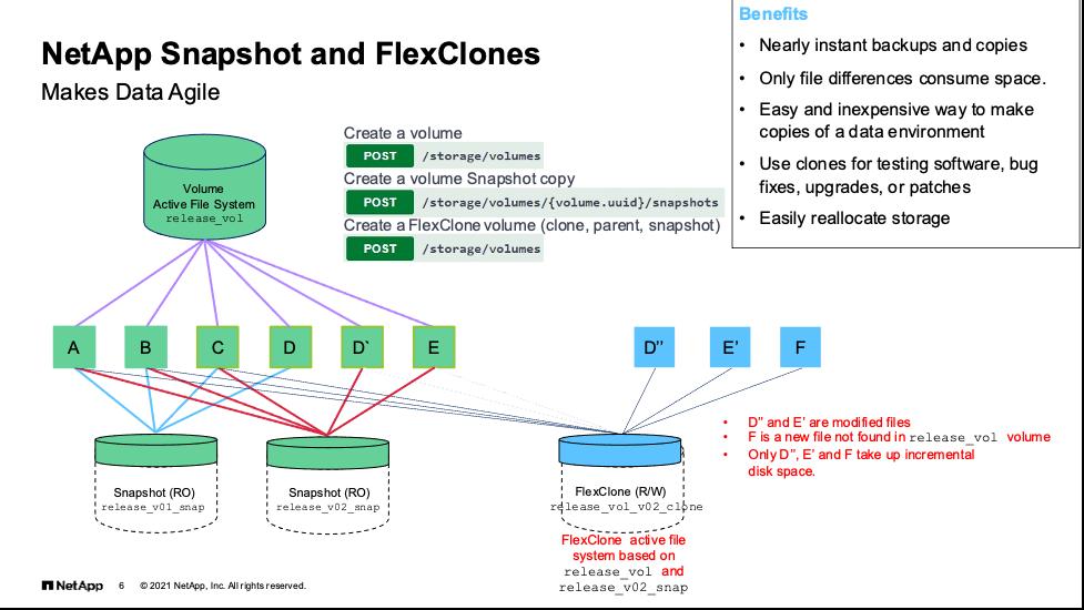 NetApp Snapshots and FlexClones